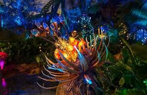Pandora: The World of Avatar at night at Disney World's ...
