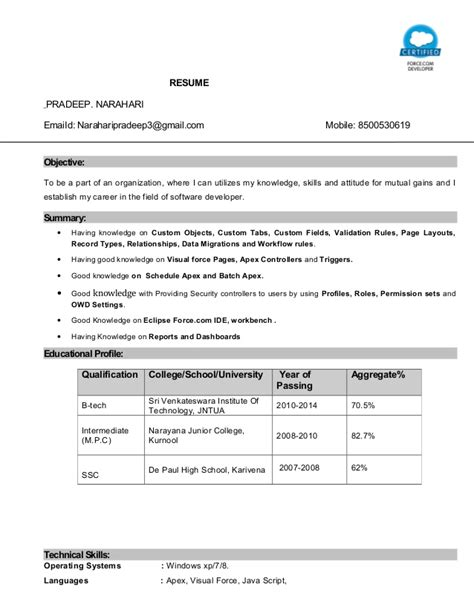 salesforce certified developer resume essaysbank x fc2 com