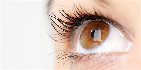 Prices For Laser Eye Surgery In Istanbul, Turkey  Novacorpus. Email Listing Database West Virginia Gis Data. Best Saving Account Rates Arader Tree Service. Voip Service Providers In Delhi. Best Dentist Colorado Springs. Flights Los Angeles To Florida. Business Schools In South Carolina. Sub Zero Refrigerator Maintenance. New York Defense Attorney Voice Alarm System
