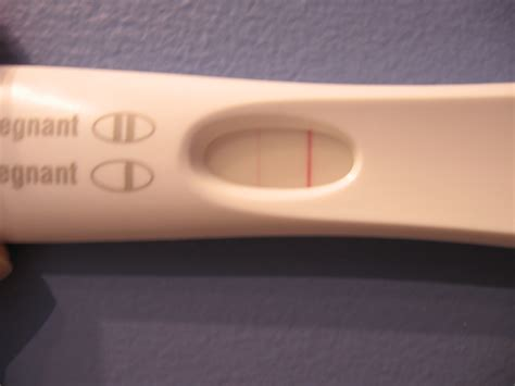 Why Is There A Faint Line On Pregnancy Test New Kids Center