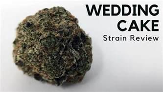 wedding cake strain wedding cake cannabis strain information review ismoke magazine