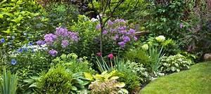 Quand Planter Lavande Dans Jardin : quand planter ses arbustes persistants c t ~ Dode.kayakingforconservation.com Idées de Décoration