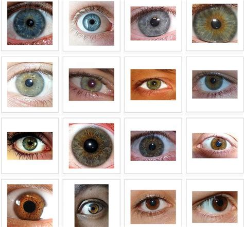 what is the most common eye color you probably knew that brown is the most common eye color