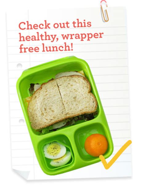 glass lunch containers lunch box waste free lunch boxes biome