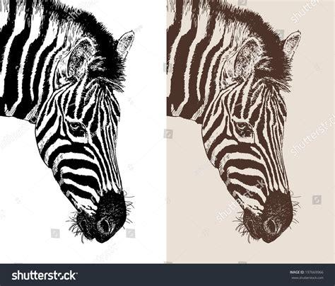 Artwork Head Profile Zebra Digital Sketch Stock Vector