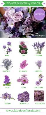 Outdoor & Garden Best 25 Purple Flower Names Ideas On