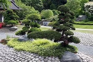 Kleiner Baum Garten : bonsai baum im zen garten gestaltungsideen ~ Lizthompson.info Haus und Dekorationen