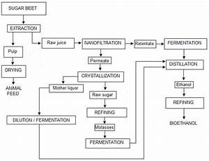 Advances In The Development Of Bioethanol  A Review