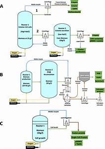 Process Flow Diagram For A Biorefinery Primarily Based On