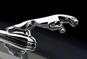 2018 NEW 90+ Jaguar Car Logo Images Free Download 【2019】