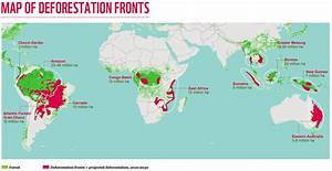 Deforestation fronts in the world were revealed by ...