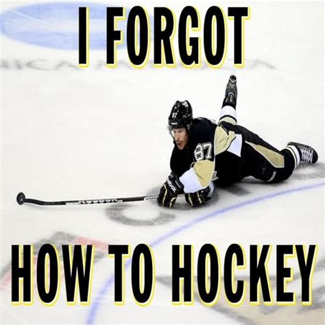 Funny Hockey Memes - 45 very funny hockey meme pictures and images