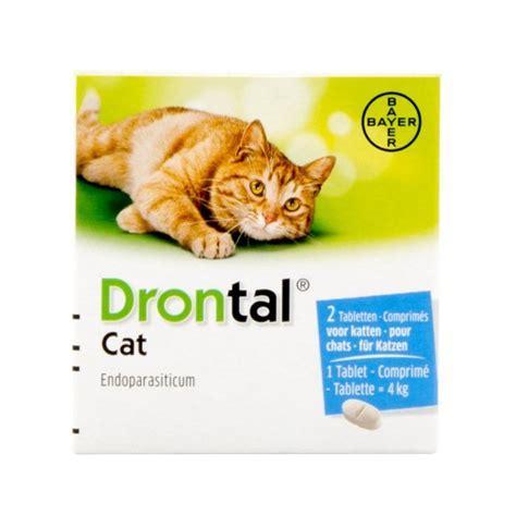 drontal cat wurmkur fuer katzen