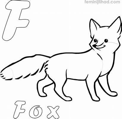 Fox Coloring Printable Pages Realistic Gerbil Colorings