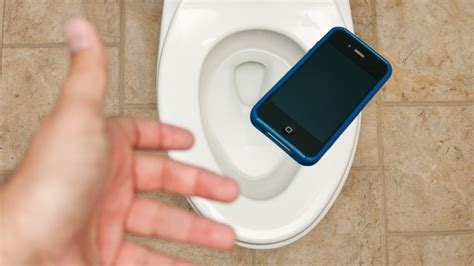 dropped my iphone in the toilet help i dropped my phone in water angie s list