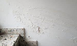 Feuchte Wand Verputzen : verputzen im innenraum verschiedene putzarten im berblick ~ Frokenaadalensverden.com Haus und Dekorationen