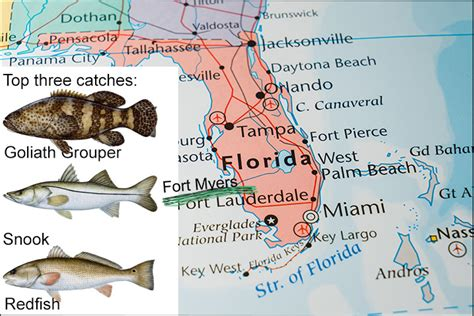 florida fishing fort myers fish species map destin places three them water fishingbooker catch none