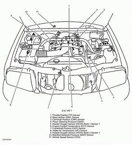 2000 Pontiac Sunfire Engine Diagram 2 2 Thermostar Ac Wiring Lights Cts Lsa Yenpancane Jeanjaures37 Fr