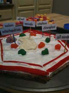 Edible Plant Cell Project Recipes