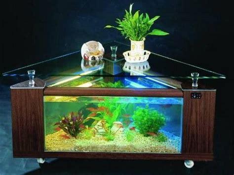 tips  successful interior decorating  aquariums