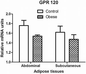 Mrna Expression Of Gpr 120 In Abdominal And Subcutaneous