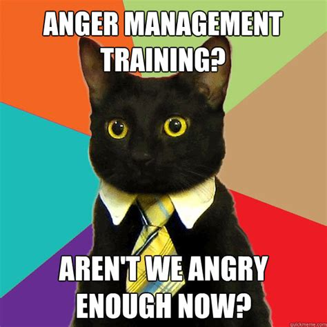 Business Cat Meme - anger management training aren t we angry enough now business cat quickmeme