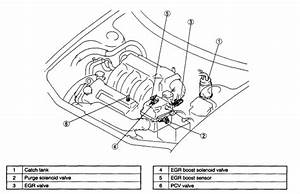1999 Mazda 626 Egr Valve     Where Is It Located