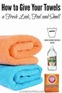 How to get rid of carpet smell after washing meze blog for How to get rid of urine smell in bathroom