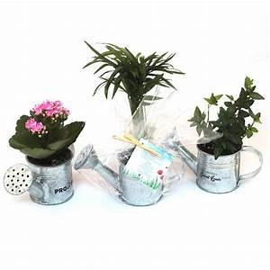 Pot Pour Plante : plante en arrosoir zinc personnalisable objet publicitaire nature ~ Teatrodelosmanantiales.com Idées de Décoration