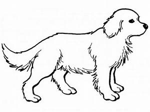 Realistic Dog Coloring Pages – Color Bros
