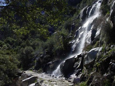 Unnamed Waterfalls Hetch Hetchy World