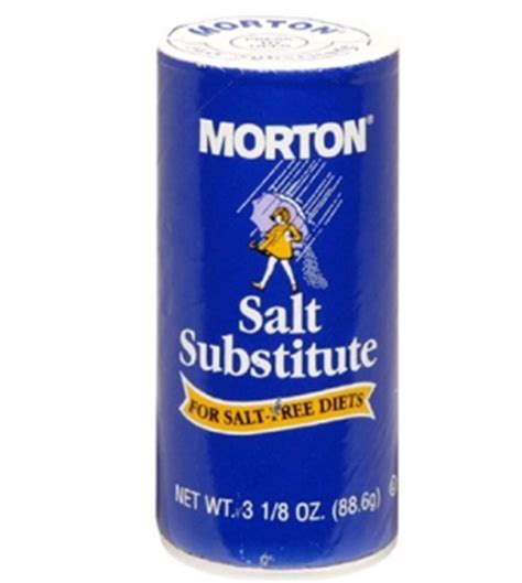L Substitute by What Can I Replace Salt With