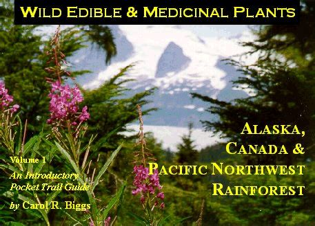 plants of the northwest northwest foraging the classic guide to edible plants of the pacific northwest download books