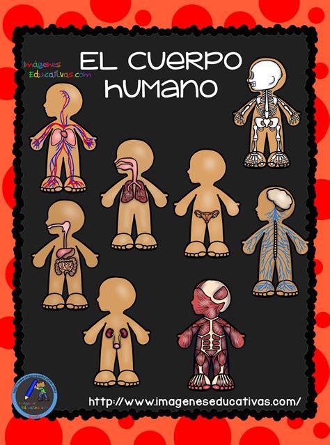 El Cuerpo Humano; Aparatos y Sistemas para Primaria (1