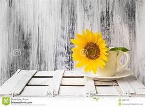 Background Still Life Flower Sunflower Wooden White ...