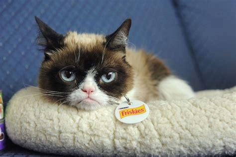 Grumpy Cat Returns To Sxsw Get To The #catconcoctions