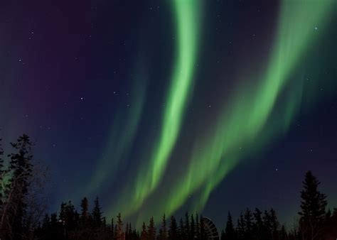 Auroras Seen At High And Mid-latitudes