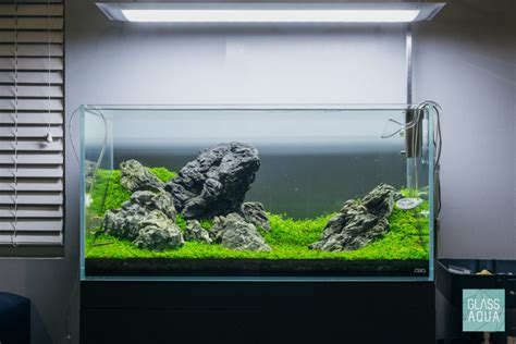 guide to aquascaping guide to planted aquarium aquascaping rescaping and
