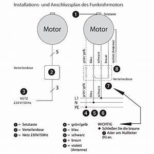 Elektrische Rolladen Einstellen : rademacher elektronischer rohrmotor mit funkempf nger rollotube intelligent rtfm 10 16 10 nm ~ Eleganceandgraceweddings.com Haus und Dekorationen