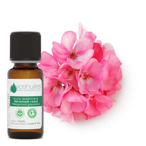 huile essentielle de geranium rosat huile essentielle de