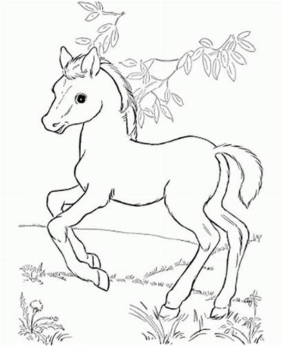 Coloring Pages Disney Horse Horses Printable Getcolorings