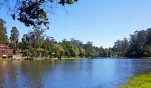 Kodaikanal Lake In Kodaikanal Kodaikanal Kodaikanal Lake