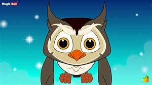 Big Eyed Owl - English Nursery Rhymes  Animated