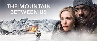 Between Mountain Movie Desta Pirateados Filmes Semana