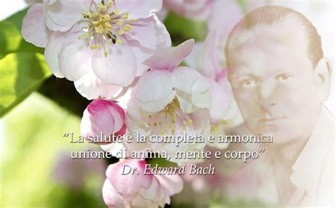 fiori do bach visioneolistica it risorse utili per corpo mente e spirito