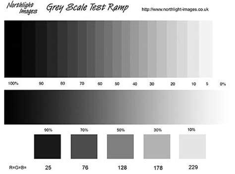 digital black  white printing   inkjet printer