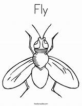 Fly Coloring Pages Sheets Printable Insect Print Preschool Guy Flies Colouring Outline Template Twistynoodle Cartoon Clipart Worksheets Clip Fruit Animals sketch template