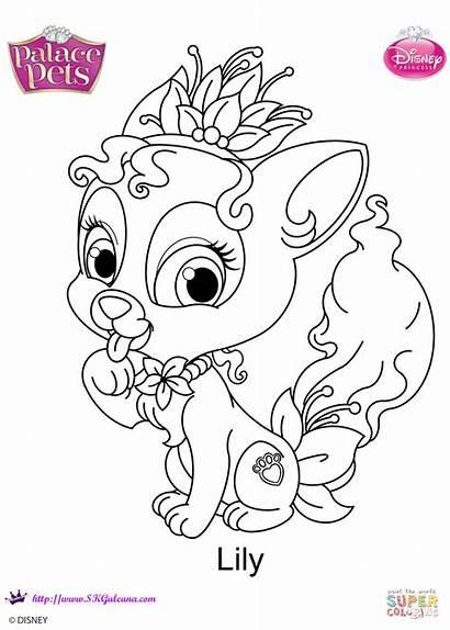 Coloring Pets Palace Pages Princess Lily Disney