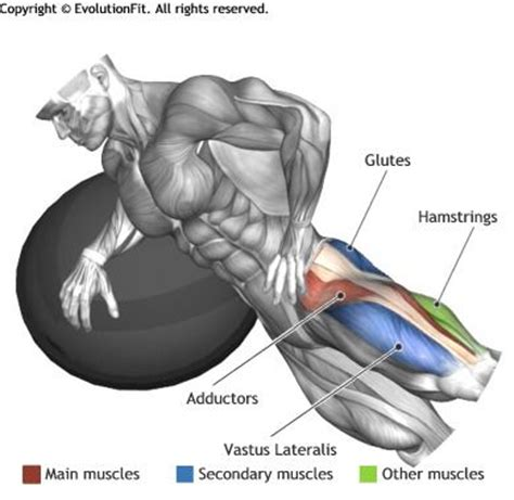 captains chair leg raise bodybuilding 25 best ideas about leg raises on crunches