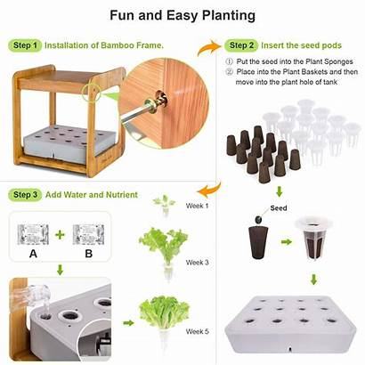 Indoor Grow Plant Growing Kit System Gardening